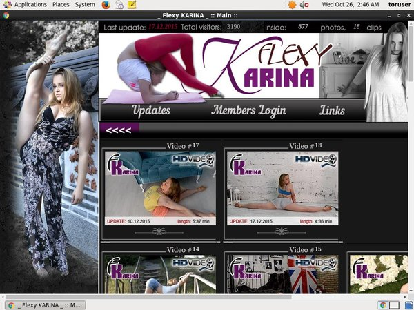 Flexy Karina Store